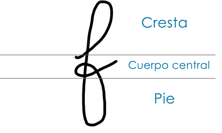 grafologia-partes-letra