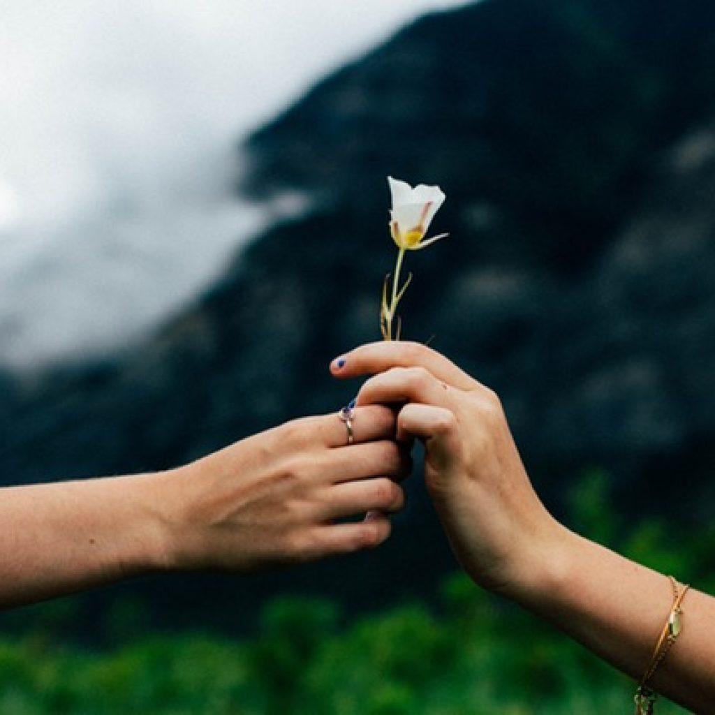 manos-flor