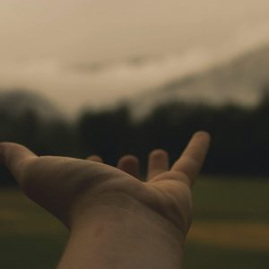 mano-naturaleza