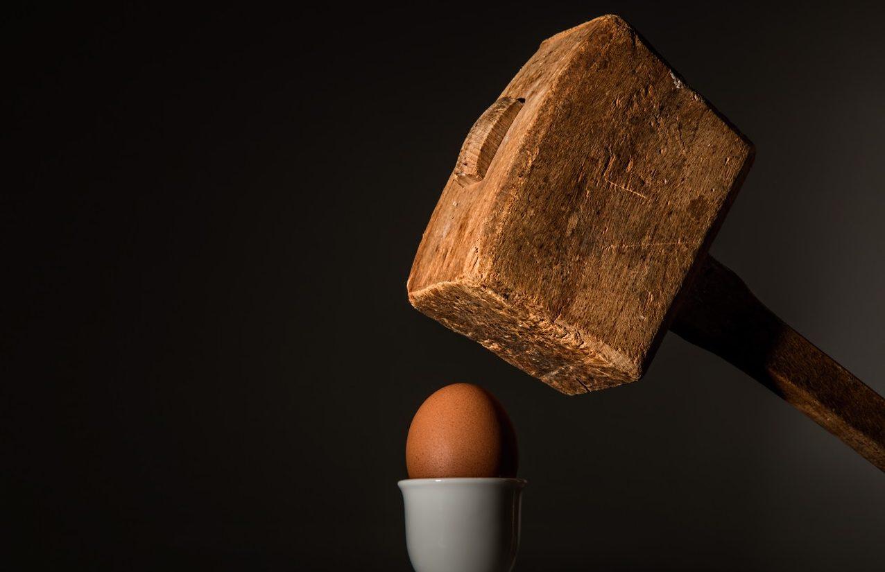 martillo-huevo-daño